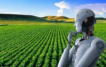 El despegue de la inteligencia artificial en el agro chileno